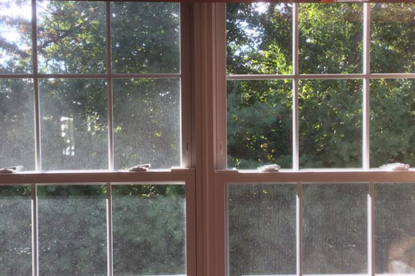 Windows shown before and after hard water stain cleaning.